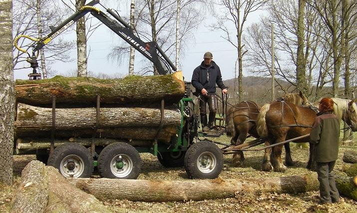 Griplastarvagnen kan dras av flera hästar